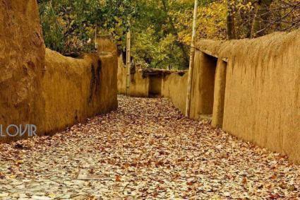 پاییز غریب و بی رحم